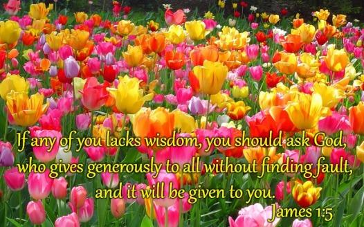 ask wisdom